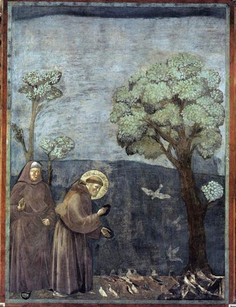 st. francis preaching to birds ile ilgili görsel sonucu